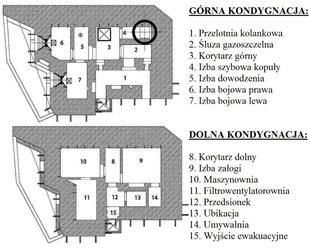 tekst6rys1